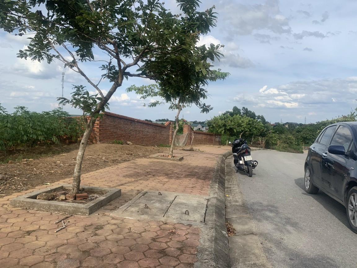 Bán đất nền Hòa Lạc khu 12 lô Tái Định Cư Phú Cát (TĐC Vai Réo)