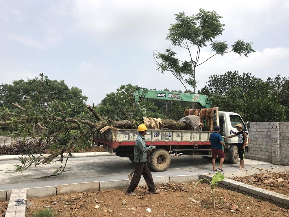 18 Lô Đất thôn Cánh Chủ, Xã Bình Yên - Khu CNC Hòa Lạc