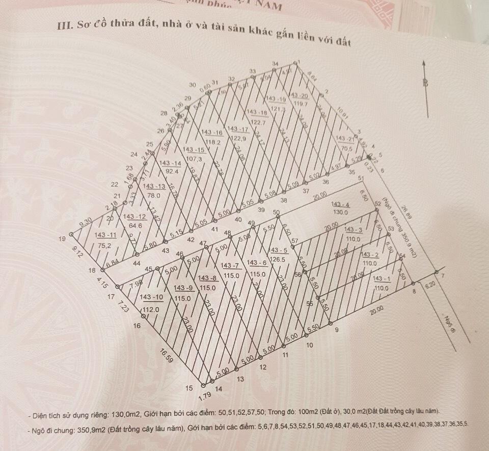 21 lô Đất nền thôn Vân Lôi Bình Yên có sổ đỏ cách công nghệ cao Hoà Lạc 100m