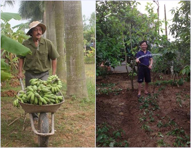 Đất trang trại cũng là loại hình được nhà đầu tư lựa chọn tại Hòa Lạc
